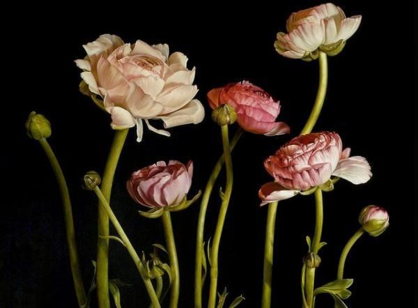 گل هایی که شاهکارهای گران قیمت شدند